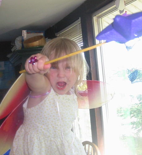 Sword Fighting Fairy 2