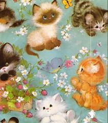 cute kitten wrap 2 (lorryx3) Tags: blue white cute bird birdie ginger kitten kitty cutie cutsie vintagewrappingpaper