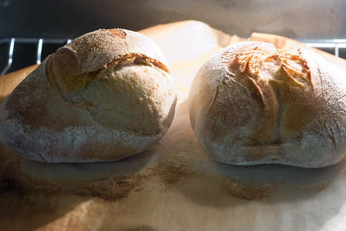 Sourdough Chronicles: (L) Exploded Batard (R) Fendu-Butt