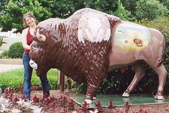 Ardmore Buffalo (aimeedars) Tags: aimeedars summer 2004 buffalo spiritofthebuffalo oklahoma ok publicart paintedbuffalo paintedsculpture painted statue