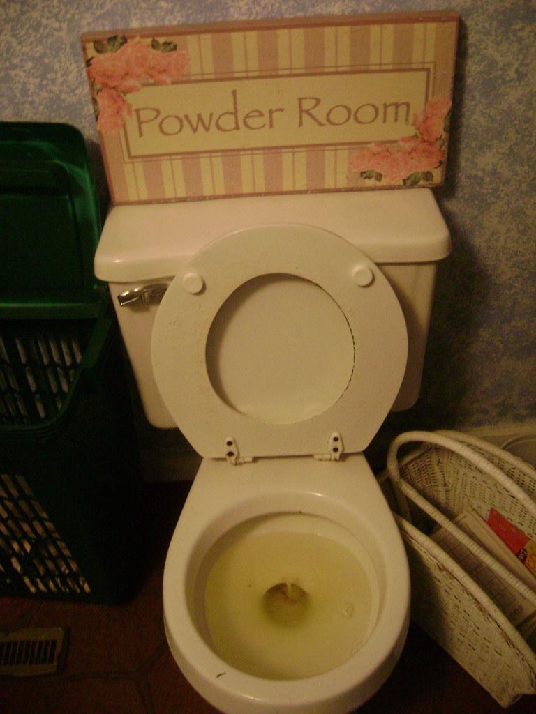 Bathroom loo pee pee peeing shitter toilet that