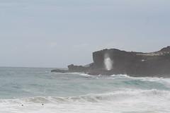makapuu blowhole (jayjoy_barnone) Tags: hawaii oahu blowhole makapuu