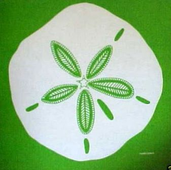 Marushka - sand dollar (white on green)
