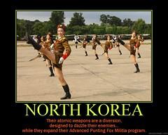 d North Korea (dmixo6) Tags: corporate funny motivator humor fox irony despair motivation parody militia demotivator weapons northkorea punt demotivation dmixo6