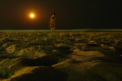 Lonely girl _ companied by moon _ beach candid (SenShots / Senthilmani's Photography) Tags: longexposure travel sea orange moon india black macro green beach nature water colors girl beautiful beauty yellow lady night canon dark photography lights sand women scenery waves alone nightshot artistic earth madras ground scene m latenight fullmoon textures environment greenery lonely lovely chennai lowkey soe tamilnadu macroshot sen nagar naturally southindia lowangle lowperspective dil besant beautifulearth senthil abigfave msenthil sendil platinumphoto aplusphoto goldstaraward senshots senthilm armsenthil senthilmani browncolorful chennapatnam senshotsphotography senshots2008 madrasapatnam