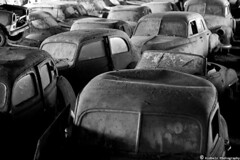 commuting time (kidbelz) Tags: auto blackandwhite bw cars abandoned graveyard car canon eos 50mm switzerland rust suisse noiretblanc decay cemetary rusty voiture bern junkyard scrapyard voitures blackdiamond noirblanc rouille cimetire autofriedhof kunk 400d aplusphoto img1318 grbetal gurbetal bwartaward kaufdorf messerli kidbelz wwwautofriedhofch historischerautofriedhofgrbetal