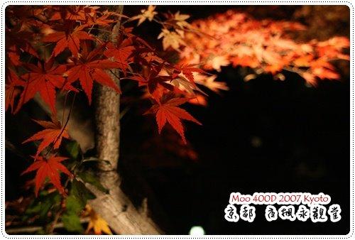 夜楓永觀堂-18