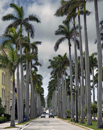 West Palm Beach by Alida's Photos