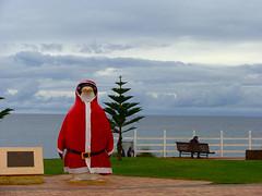 Penguin - Explored (crafty1tutu (Ann)) Tags: penguin australia tourist tasmania golddragon abigfave impressedbeauty top20red dazzlingshots