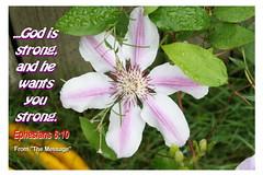 Inspirational Bible Verses