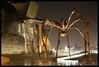 Museo Guggenheim Bilbao e araña Mama (_madmarx_) Tags: light museum bronze night reflections noche spider mama bilbao guggenheim museo araña titanium frankgehry euskadi louisebourgeois reflejos titanio museoa justonelook aplusphoto flickraward artlegacy spiritofphotography discoveryphotos freedomhawk artofimages topofyou madmarx