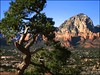 Sedona2 (dgehl) Tags: arizona nature wisconsin photography photo donna sedona kartpostal awesometrees dgehl donnagehl