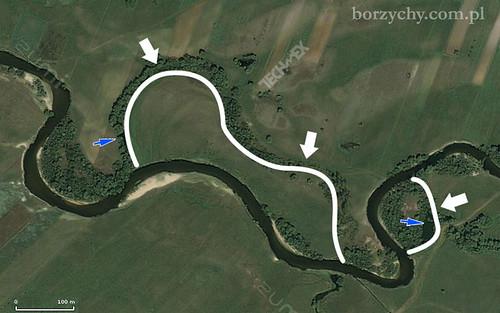 meandry w Borzychach