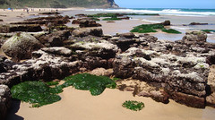 Garie beach (robynejay) Tags: beach nsw garie royalnationalpark gariebeach stephanrobyn