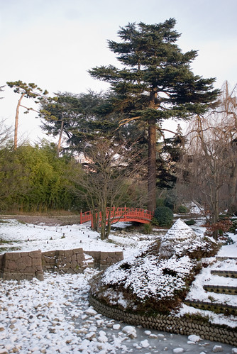 Les jardins d'Albert Kahn V