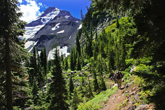 Hiking near Elk Cove (PhotoScenics) Tags: travel mountain mountains green oregon landscape scenic cascades mthood pacificnorthwest mounthood scenics cascademountains mountainrange cascademountainrange sceniclandscape photoscenics