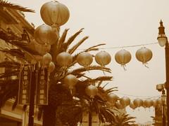 Hong Kong 424 (ginnybelle) Tags: hongkong kowloon bigbuddha oceanpark taio yaumatei genkesushi