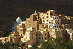Yemen_23-12-07_223 (Kelly Cheng) Tags: shadow horizontal architecture outdoors photography day village nopeople getty yemen traveldestinations ruralscene buildingexterior fanpalmtree lpdwellings pickbykc