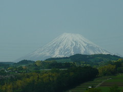 Mount Fuji (seikinsou) Tags: japan train fuji tea railway jr mount plantation bullet shinkansen