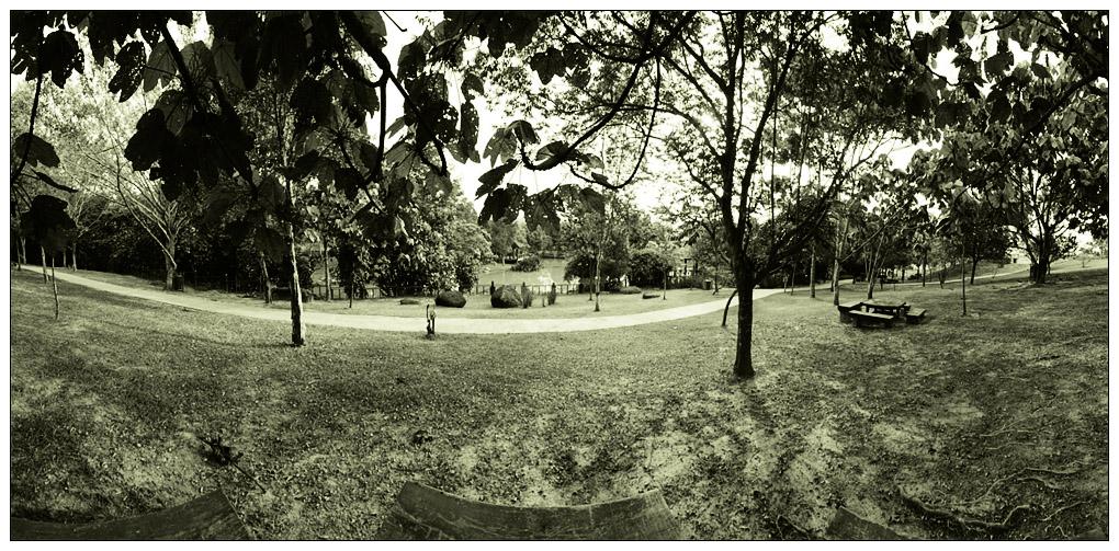 Putrajaya Wetlands 2