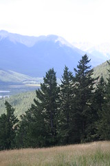 Bow River Valley (chrissandoval) Tags: summer mountains alberta banff banffnationalpark