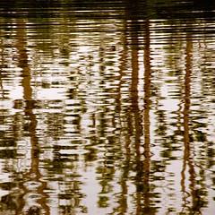 Royal Palace of Venaria (cienne45) Tags: friends italy reflections square cienne45 carlonatale explore turin royalpalace venaria aplusphoto artedellafoto royalpalaceofvenaria grandepeschiera superphotoex aplusphotoex aphotoex exploreexset explore1336