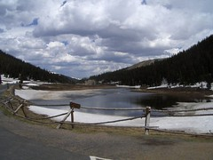 HPIM1237 (jimvickers) Tags: colorado elk rockymountainnationalpark continentaldivide bouldercreekpath summer2008