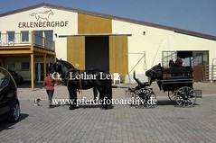 lz190504(5) (Lothar Lenz) Tags: deutschland friese pilcher 56812dohr