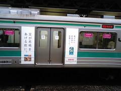MA330053