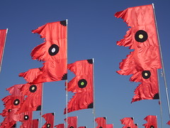 WOMAD red flags