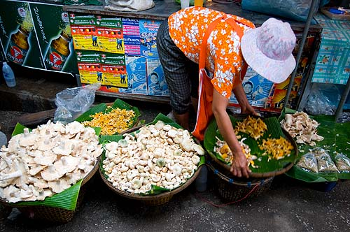 Wet season mushrooms at Lampang's evening market