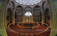 Selimiye (Sinan Doan) Tags: selimiyecamii edirne selimiyeklliyesi balkgz edirnecamileri mosque fisheye trkiye mimarsinan mimarsinaneserleri turkey   trkei trkiy osmanldnemi islam islamiyet mslman edirnegezilecekyerler edirnegezi edirnefotoraflar