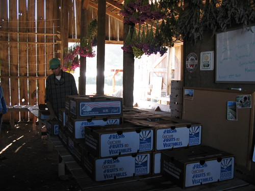 CSA Boxes at Blue House Farm