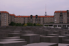 6m (*) Tags: world 2 berlin germany deutschland holocaust memorial war peter million ww2 six eisenmann shoah 6000000