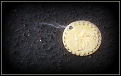 Lost Coin (dcbprime) Tags: lebanon coin lebanese dayton hipscarf raqssharqi رقصشرقي lebanesefestival raqsbaladi رقصبلدي
