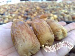 The date  2 (My life2008) Tags: food tree with palm health  dates puu  ruoka useful       terveys      hydyllisi