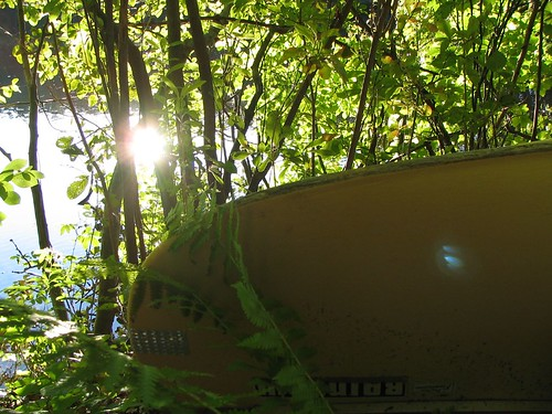 Canoe in the Woods