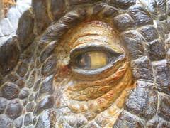 Eye! (steve260589) Tags: uk england unitedkingdom oxford oxforduniversity oxforduniversitymuseumofnaturalhistory oumnh