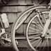 BikeTour2008-685_b&w