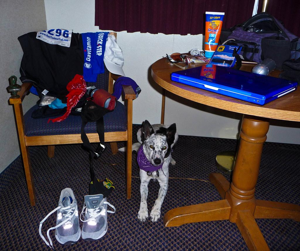 Bizz Johnson Marathon - Motel Room Pre-Race Preparation, and Ringo 2008