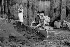黑白童年-手足之情