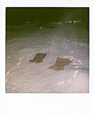 we'll come back someday (emma haskins) Tags: snow girl polaroid photo dress ghost 600 footprint savepolaroid