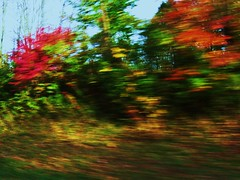blurry trees from car (vwallac) Tags: blue autumn trees red orange motion blur fall colors leaves rural moving leaf sticks blurry fast indiana crooked sideways