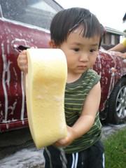 how big the sponge is