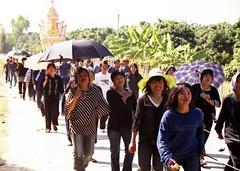 MCF0033_Farewell (ol'pete) Tags: thailand funeral chiangmai cremation        earthasia doilo      maecum