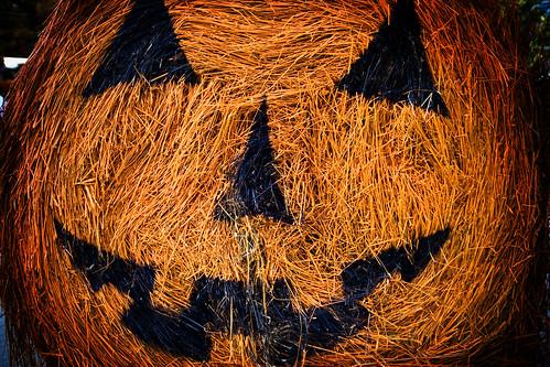 Halloween Hay Bail