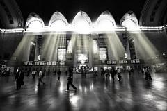 Shine in grand central (Tony Shi Photos) Tags: nyc newyorkcity blackandwhite bw photoshop shine connecticut rail grandcentralstation sunrays bigapple metronorth grandcentralterminal midtownmanhattan      sonya700    thnhphnewyork  tonyshi