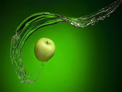 SPLASH..! (Fliker_2000) Tags: verde photo perfect flickr superb photos picture 365 1001nights 2009 soe masterpiece ma d300 potofgold bestpic flirck 50faves 5photosaday totalphoto flirckr flickrcolour abigfave anawesomeshot flickr365 ultimateshot 1on1photooftheweek theperfectphotographer goldstaraward nature alemdagqualityonlyclub flickrsmasterpieces supershot unforgettablepictures searchthebest shieldexcellnce platinumphotograph welcometomyworld magicofaworldinmacro macroawards macromarvels group naturephotographs perfectphotographer photosmiles