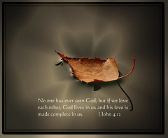His Love is Made Complete In Us (honey 77) Tags: autumn light love nature water beautiful leaf god jesus lord christian inspirational scriptures bibleverse christianphotoshop inspiks|inspirationalpictures
