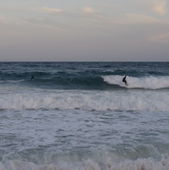 Surf in Barceloneta